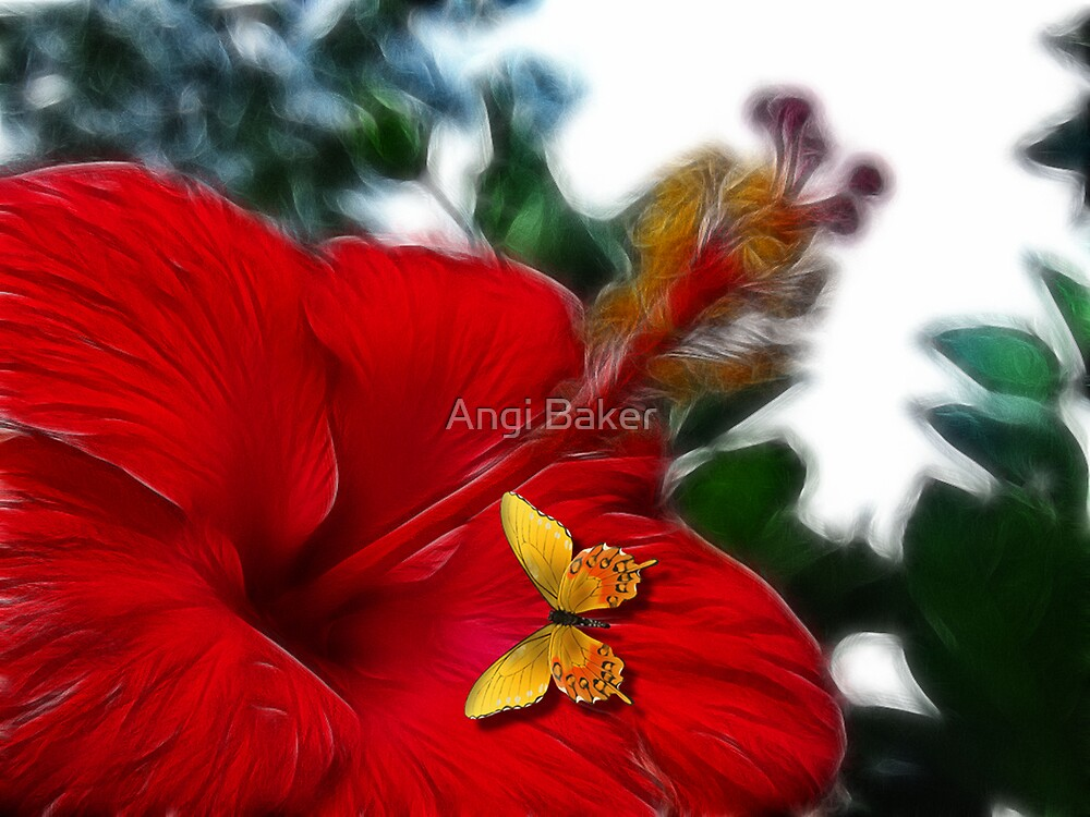 Butterfly Kisses by Angi Baker