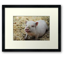 Bacon, I'm not. Framed Print