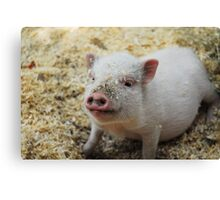 Bacon, I'm not. Canvas Print