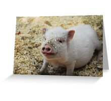 Bacon, I'm not. Greeting Card