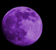 Lavender Moon by Donna Adamski