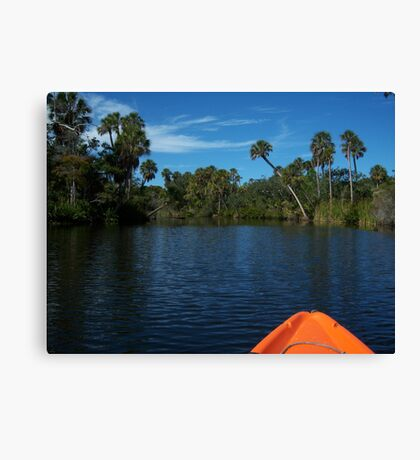 Precious Moments with Nature Canvas Print
