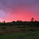 Hot Pink Sunset II by Megan Noble