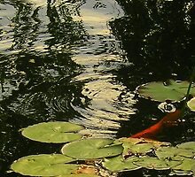 Ripplillied by Deanna Roberts Think in Pictures