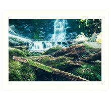 Horseshoe Falls, Tasmania, Australia Art Print