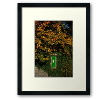 Autumn Legan Postbox, Ireland Framed Print