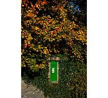 Autumn Legan Postbox, Ireland Photographic Print
