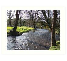 Blarney Castle - River Art Print
