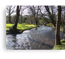 Blarney Castle - River Canvas Print