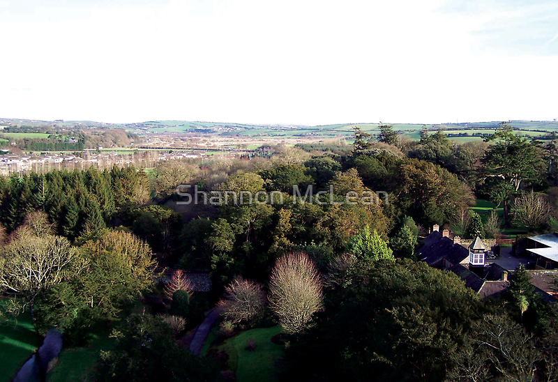 Blarney 2 - The View by shanmclean