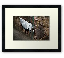Sheep in the city Framed Print