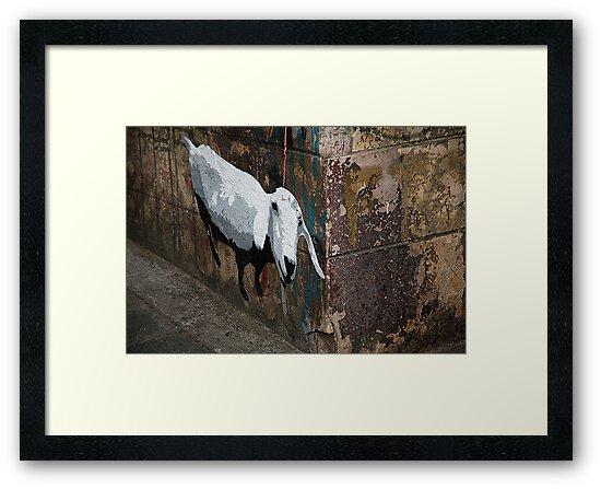 Sheep in the city by Rosina  Lamberti