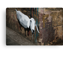Sheep in the city Canvas Print