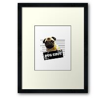 Pug Shot Framed Print