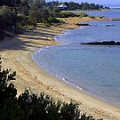 Ricketts Point from Quiet Corner Black Rock  Victoria  Australia by bayside2