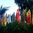 A surfboard fence by Marjorie Wallace