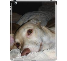 My Pretty Puppy and Dean iPad Case/Skin