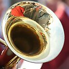 Tuba Reflections by Pamela Jayne Smith