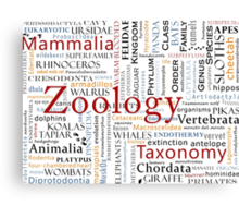 Mammals In Typography Canvas Print