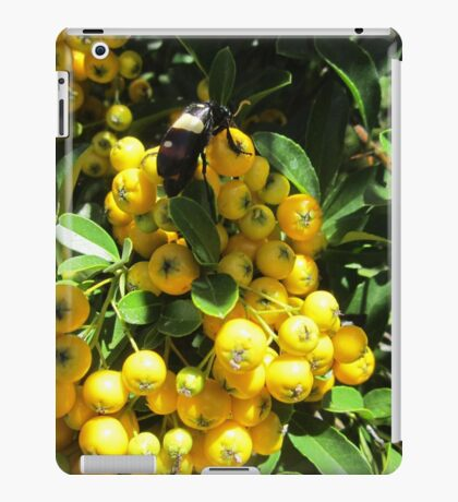 Hungry insect iPad Case/Skin
