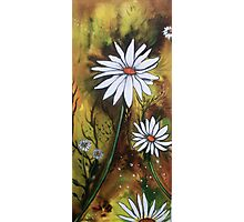 Forest Daisies  Photographic Print