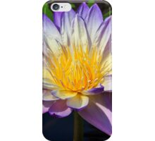 Beautiful Water Lily and Lily Pad iPhone Case/Skin