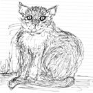 Cat Doodle by Alison Howson
