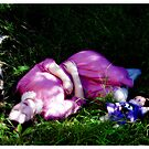untitled #41 by Bronwen Hyde