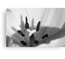 Abstract Macro Flower Canvas Print