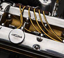 Jaguar XK engine by dlhedberg