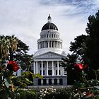 State Capital ~ Sacramento, California by NancyC