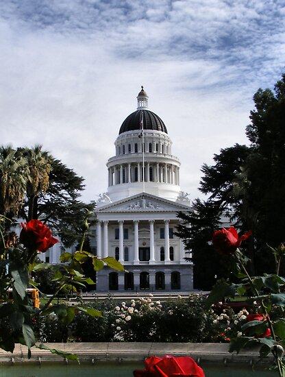 State Capital ~ Sacramento, California by NancyC