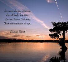 Love came down at Christmas . . . by Bonnie T.  Barry