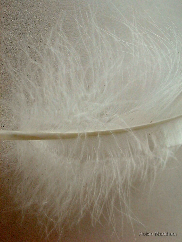 Swans Legacy Series by Roisin Markham