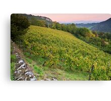 Autumn dusk on Roussette vineyard Canvas Print