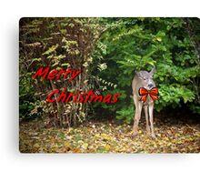 Merry Christmas Doe Deer With Bow Christmas Card Canvas Print