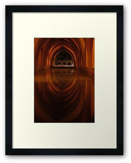 Seville Orange by Catherine Hadler