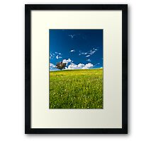 single tree on bright meadow Framed Print