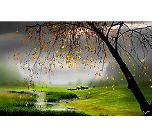 Tranquillity  Photographic Print