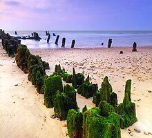 Walberswick Beach Suffolk 9. by Wayne Bradshaw