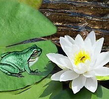 ⊱✿ ✿⊰⊹ ♧ ✿ THIS LILLY PAD IS NOT BIG ENOUGH FOR THE TWO OF US ⊱✿ ✿⊰⊹ ♧ ✿ by ✿✿ Bonita ✿✿ ђєℓℓσ