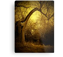 FRITTON, NORFOLK Metal Print