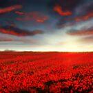 Speedpaint landscape: Flower Field by Richard Eijkenbroek