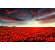 Speedpaint landscape: Flower Field Photographic Print