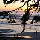 Carmel Sunset Walk by Sandra Gray