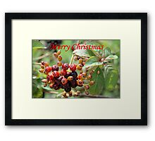 Christmas Berries I Framed Print