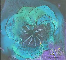 blue Pansy by Dobbiesday