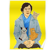 Sherlock and kittens Poster