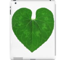 Love Heart Leaf iPad Case/Skin