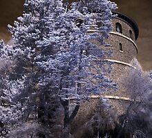 Midnight Tower by Mark Bauschke